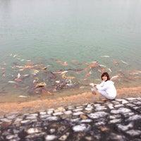 Photo taken at บ่อปลา อ่างเก็บน้ำ สวนพนาวัฒน์ by Pupiboy S. on 3/5/2013