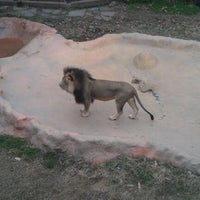 Photo taken at Little Rock Zoo by Clifton B. on 1/9/2013