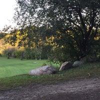 Cedarvale Park Dog Park
