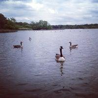 Photo taken at Fleet Pond by Ekaterina L. on 6/10/2013
