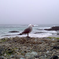 Photo taken at Aliso Beach by Steve S. on 2/4/2013