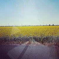 Photo taken at Autostrada A13 by Ilaria R. on 7/31/2013