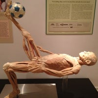 Photo taken at International Museum of Surgical Science by Niklos S. on 9/15/2012