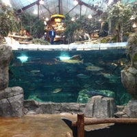 Photo taken at Bass Pro Shops by Alan L. on 2/27/2013