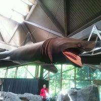 Photo taken at Vancouver Aquarium by kazue s. on 5/3/2013