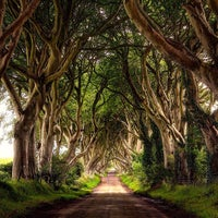 Photo taken at The Dark Hedges by Joao E. on 10/16/2016