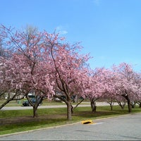 Photo taken at Stephen R. Gregg Bayonne County Park by Nannette A. on 4/16/2013