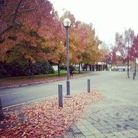 Photo taken at Buchanan A by Emily L. on 10/23/2012