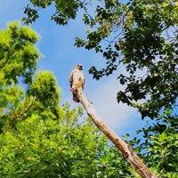 Photo taken at Bird Rookery Swamp by Kerri M. on 5/26/2013