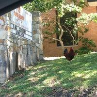Photo taken at Sam Houston State University by Jeremy K. on 4/5/2013