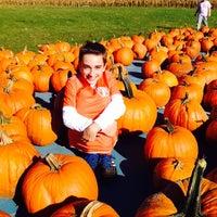 Photo taken at Altonen Orchards by Christian J. on 10/25/2014