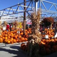 Photo taken at Nicks Garden Center & Farm Market by Matthew D. on 10/7/2012