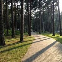 Photo taken at Dzintaru Mežaparks by Maris P. on 7/26/2013