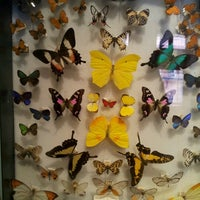 Photo taken at Harvard Museum of Natural History by Mary Claire P. on 11/16/2012