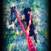 Photo taken at Ella & Friends (Deer Park) Dog Park by Vanessa B. on 11/6/2011