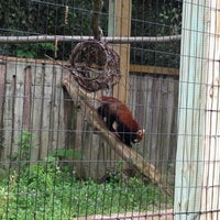 Photo taken at Binghamton Zoo at Ross Park by Jamie on 6/13/2012