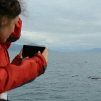 Photo taken at Elding Whale Watching by Redha A. on 7/25/2016