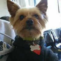 Photo taken at Len's Groomers by Mortisha A. on 4/9/2016