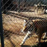 Photo taken at Zootastic Park by Trey A. on 12/28/2013