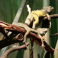 Photo taken at Prospect Park Zoo by Eliza on 1/31/2013