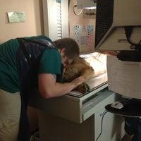 Photo taken at Animal Clinic & Wellness Center by Jodi Lynn on 5/28/2013