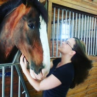 Photo taken at Express Clydesdales Ranch by Victoria K. on 5/21/2016