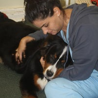 Photo taken at Montvale Animal Hospital by Montvale Animal Hospital on 8/15/2014