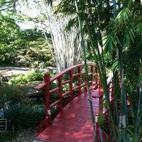 Photo taken at Miami Beach Botanical Garden by Everardo on 2/10/2013