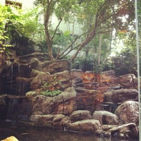 Photo taken at Banyan Tree by Romchalee on 6/16/2013