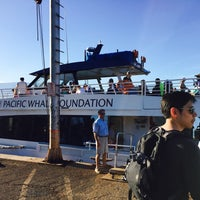 Photo taken at Pacific Whale Foundation by Allen C. on 6/3/2016