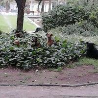 Photo taken at Parque Inés de Suárez by Elena P. on 10/27/2012