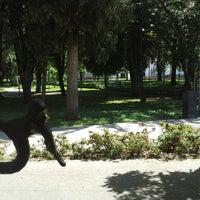 Photo taken at Parque de Arouca by Wilson P. on 5/9/2014