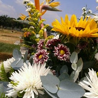 Photo taken at Cementerio del Este by Gabriela J. on 4/7/2013
