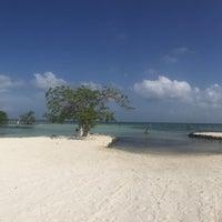 Photo taken at Riviera Maya by Gaby V on 9/8/2016