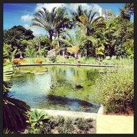 Photo taken at Miami Beach Botanical Garden by Kinoko on 6/29/2013