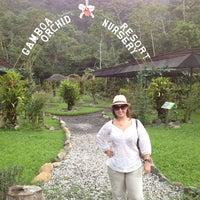 Photo taken at Gamboa Orchid & Butterfly garden by Daniela on 9/15/2012