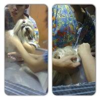 Photo taken at Animal Shelter Vet Clinic by Maui V. on 4/6/2013