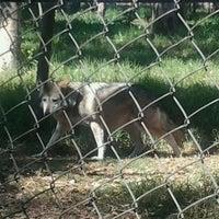 Photo taken at Parque Ecológico Los Coyotes by Alfredo H. on 12/23/2012