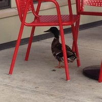 Photo taken at Five Guys by Michael on 7/8/2014