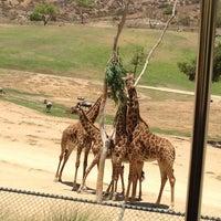 Photo taken at Safari Tram by Kelly M. on 6/10/2013