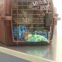 Photo taken at Michigan Humane Society by CaRhonda C. on 1/8/2014