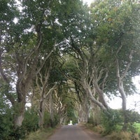 Photo taken at The Dark Hedges by Gkcn E. on 10/11/2016