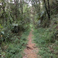 Photo taken at Horto Florestal de Campos do Jordão by Victor F. on 11/3/2012