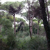 Photo taken at Parco Naturale by Tram M. on 9/15/2013