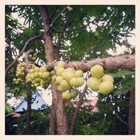 Photo taken at Lorong Kubor by Sir M. on 8/5/2013