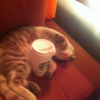 Photo taken at Starbucks by Erkan U. on 4/1/2013