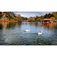 Photo taken at Peasholm Park by Mr FRoslan on 5/11/2013