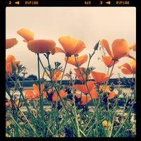 Photo taken at Santa Monica Tower 17 by Yotam S. on 4/7/2013