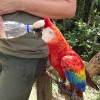 Photo taken at Gramado Zoo by Josie F. on 1/26/2013