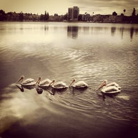 Photo taken at Lake Merritt by Savio A. on 7/26/2013